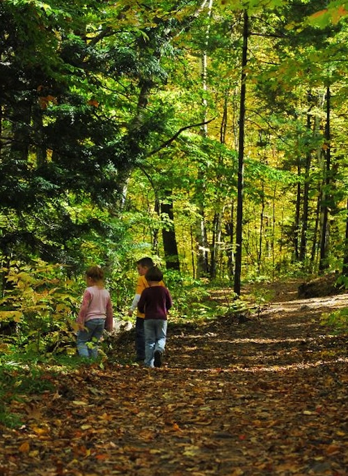Things to do with the family in the fall