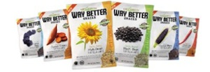 WayBetterChips Way Better Snacks are Way Better & a Coach Purse Giveaway