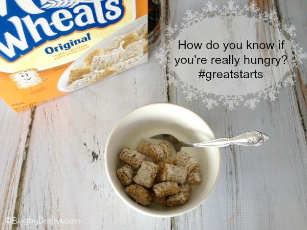 Kellogg's Frosted Mini-Wheats great start #greatstarts