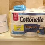 Cottonelle CleanCare Routine Flushable Wipes 1