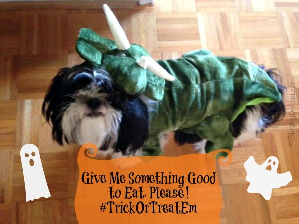 Halloween Pet Costume #TrickOrTreatEm #shop #collectivebias #cbias