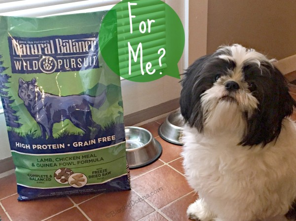 Our Shih Tzu loves Natural Balance Wild Pursuit, high protein dog food.