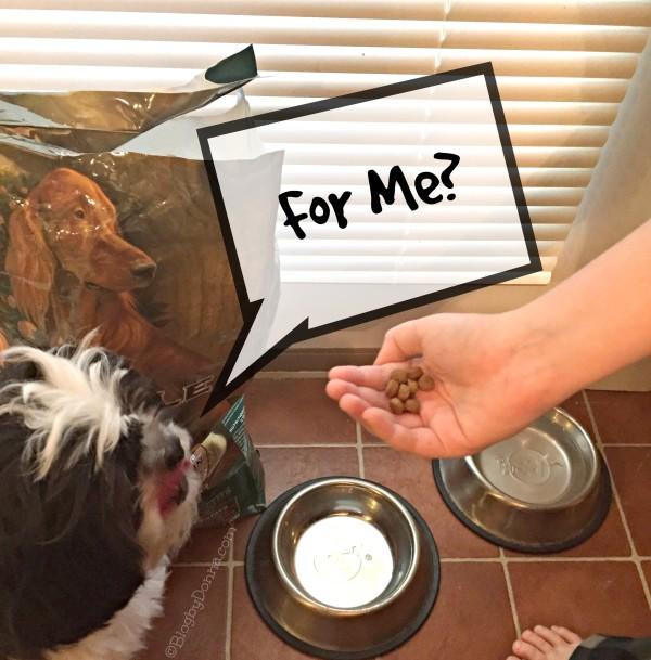 Pinnacle Grain Free Pet Food