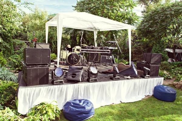 Save on wedding entertainment.