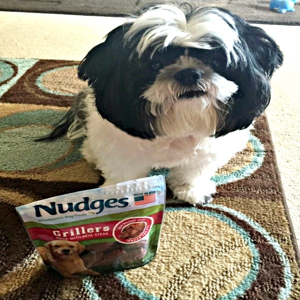 Dog treats at an affordable price with Nudges Dog Treats