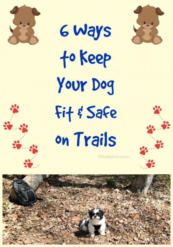 6 ways to keep your dog fit and safe on trails #RememberBeyond
