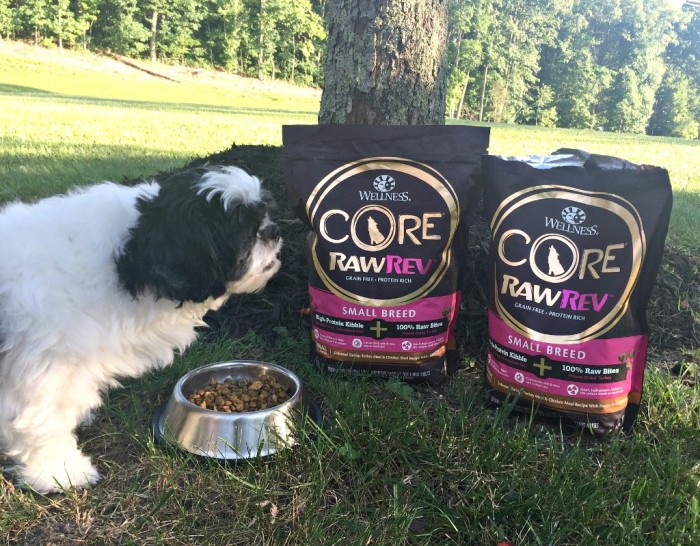 Release the power of raw with Wellness Core RawRev from PetSmart