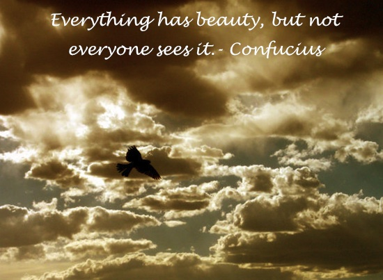 EverythinghasBeauty Everything has beauty...