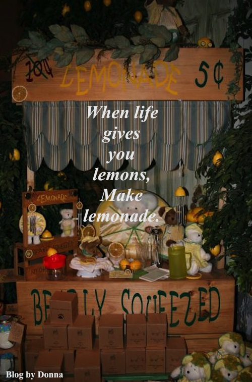 Lemons Dont let schooling interfere with your education... humorous motivational quotes