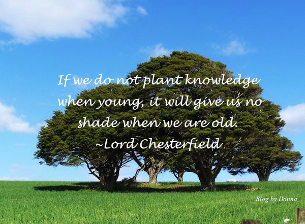 MotivationalMonday March12 Plant Knowledge While Were Young   Motivational Monday