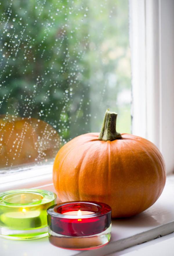 Thanksgiving Window Sill