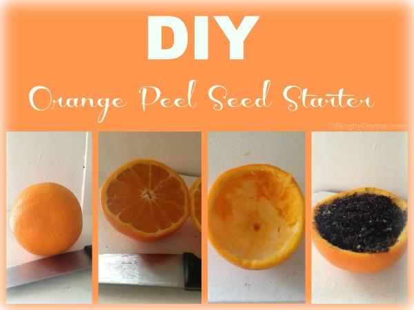 Easy DIY Orange Peel Seed Starter