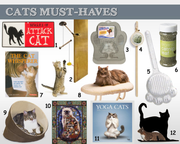 Cat Must Have Gift Ideas