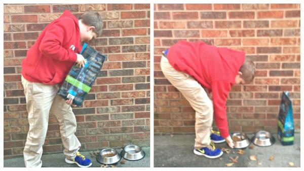 Cody helping neighbors #BeMyNeighbor Collage