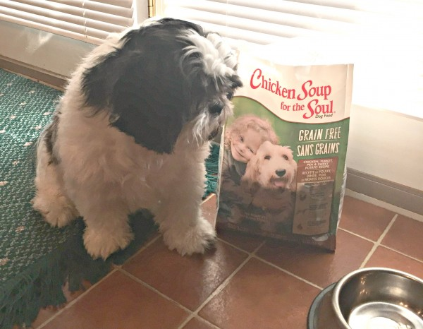 We show our love for our pet with premium pet food.
