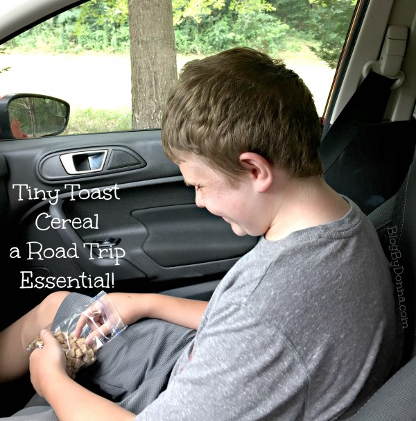 Fun things to do with teen sons in the summer... road trip!