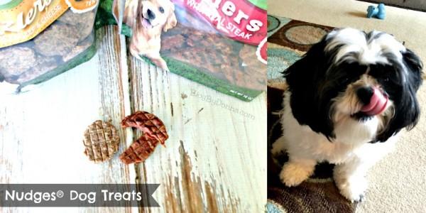 Nudges Dog Treats Twitter