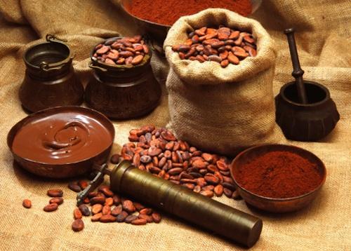 CacaoGP cacao