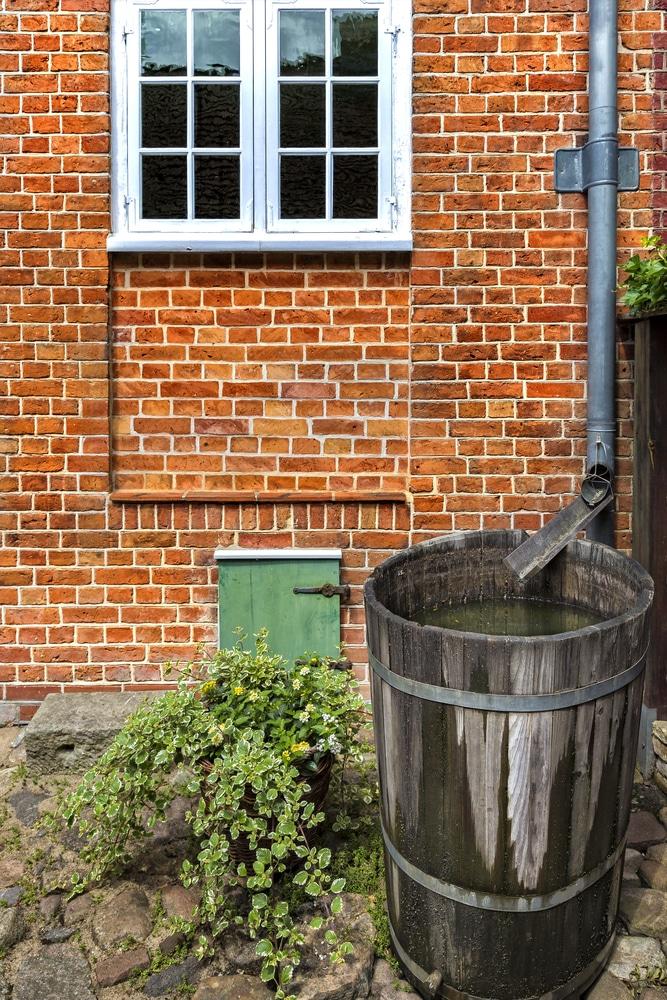 wood rain barrel gardening