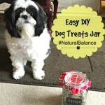 DIY Treat Jar Natural Balance healthy dog treats #NaturalBalance