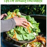 Waste Not Want Not: Tips for avoiding food waste