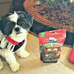Treat your pets like family by giving them Blue Buffalo healthy treats from Petsmart this holiday season....