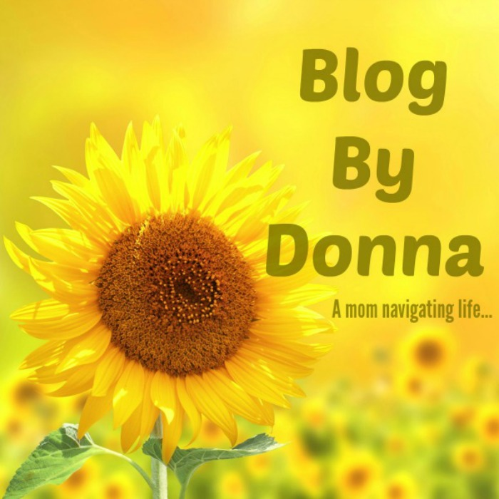 Blog By Donna Logo fo website