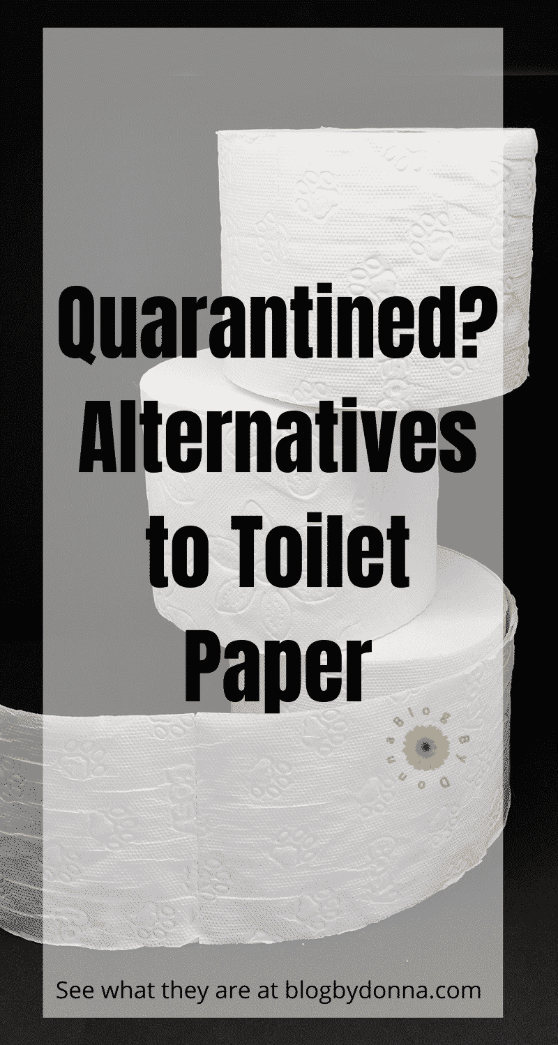 alternatives to toilet paper