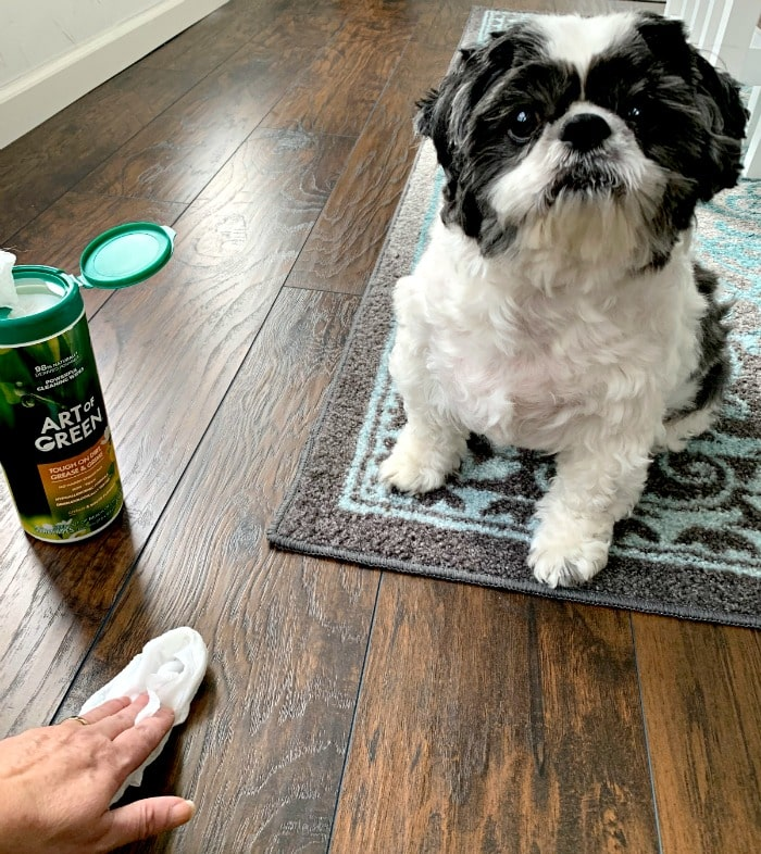 cleaners safe around pets