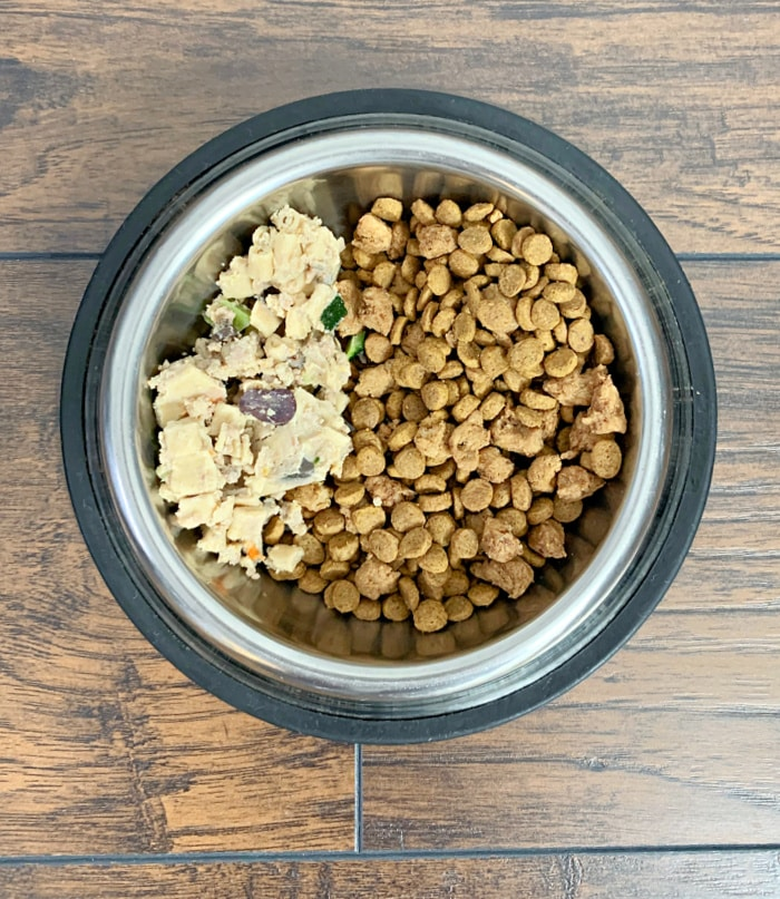 real food for dogs